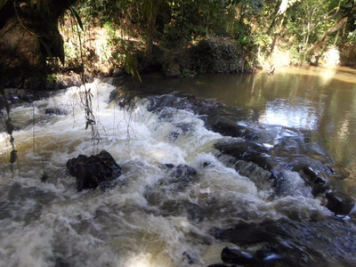 Juquitiba - Sítio/cachoeira/lago/piscina/riacho Ref: 04215