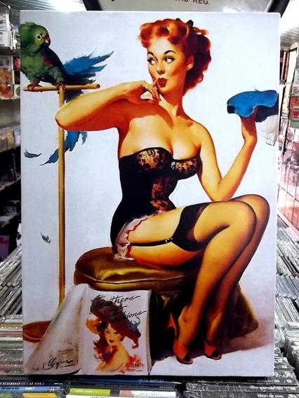 Pinup Papagaio Lindo Quadro Artesanal Poster Madeira