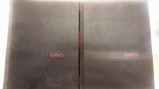 Standar Dictionary - Collier - Precio Por 2 Tomos Perfectos