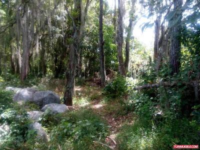 Terrenos En Venta, El Valle, Mérida