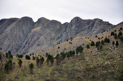 Sierra De La Ventana - Loteo Bº Ceferino. Al Pie Del Cerro