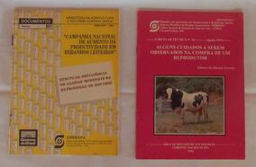 4 Circular Técnica Do Ministério Sa Agricultura