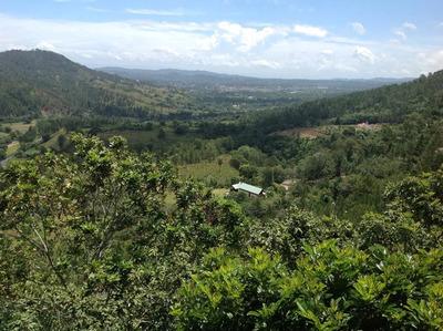 Jarabacoa Villa Frente Al Salto De Jimenoa. 4habs. Terreza