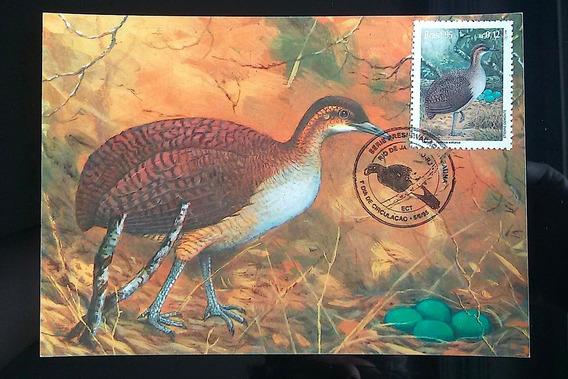 V 9113 Máximo Postal Preservacao Da Fauna Ave Macucu 1995