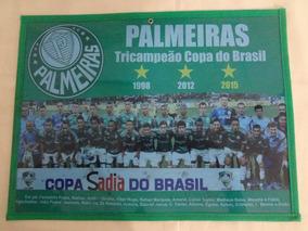 Poster Do Palmeiras