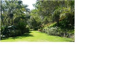 Finca En Rancho Arriba, Ocoa De 234 Tarea, Arborles Frutales