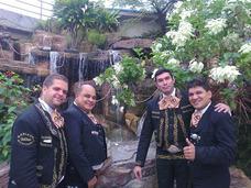 A Mariachis A Mariachi De Mi Tierra Monterrey 04142488798