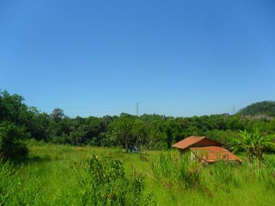 Ótima Área Com 7,5 Alqueires - Suzano