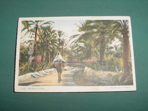 Postal Postcard Antigua Litografia Camino Al Oasis Camello