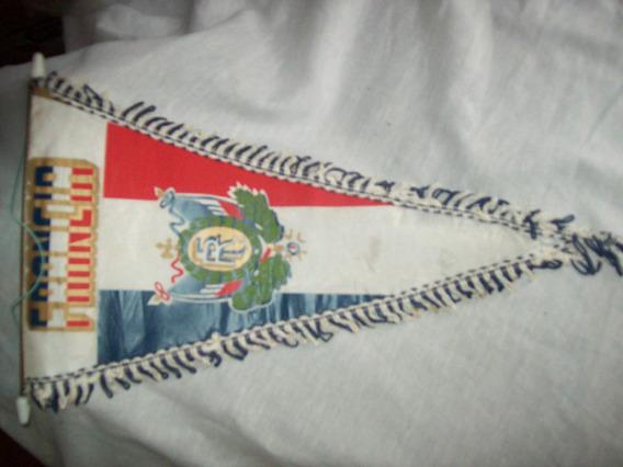 Hermoso Banderìn De Francia