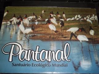 Livro Pantanal Santuario Ecologico Mundial Fotografia Mapa