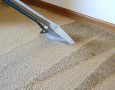 Limpieza Y Lavado De Alfombra, Carpetas, Tapizados Y Sillon