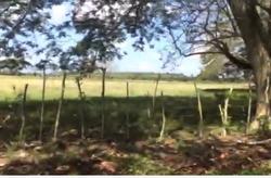 Finca De Oportunidad En Bayaguana, 2 Mil Tareas