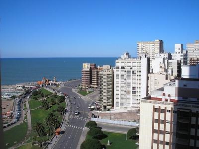 Alquilo Departamento En El Edificio Havanna Mar Del Plata