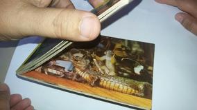 Antigo Álbum Postal