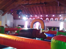 Alquiler Toro -inflable Obstaculos Ring Tobogán Plaza Blanda