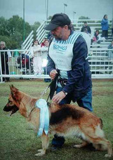 Adiestrador Canino Profesional Adiestramiento Perros [video]