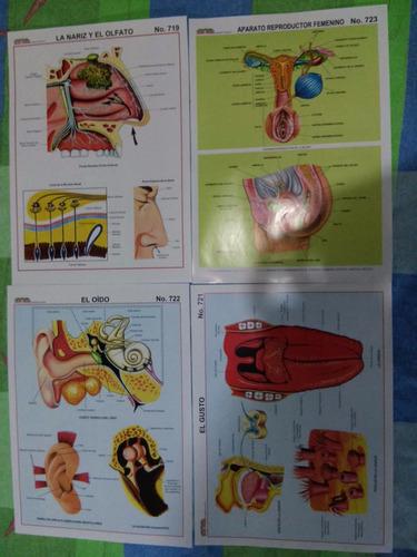 Materia Eduactivo Para Estudiantes Y Docentes(xdocena)