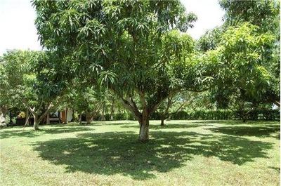 Alajuela Orotina Terreno 7119 M2 Casa Colonial Tel. 83389910