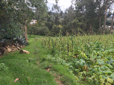 Terreno En Cajabamba