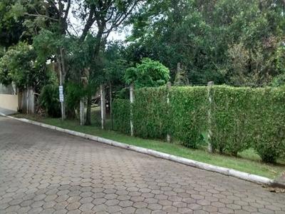 Terreno Em Penha Entre As Principais Avenidas - Rua Pavimentada - 250 Metros Do Mar - 220y
