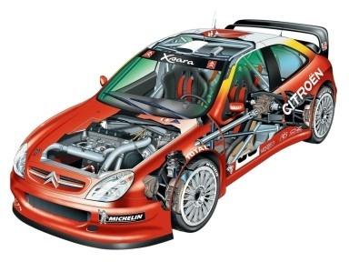 Citroen Xsara - Rally - Autos De Francia - Lámina 45x30 Cm.