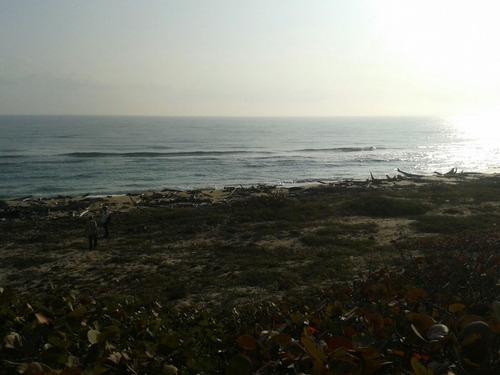Imagen 1 de 8 de Terreno Con Playa Y Laguna 9 Hectáreas