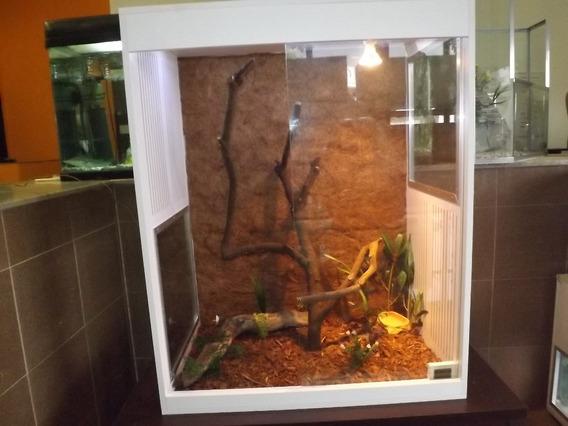 Terrário Para Iguanas ,camaleão , Répteis, Pogona