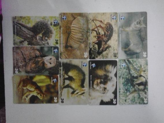 Cartões Telefônicos- Serie Animais Exóticos - Frete Grátis