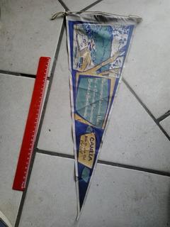 Flâmula Madeireira Ludovico Canela Rio Grande Do Sul