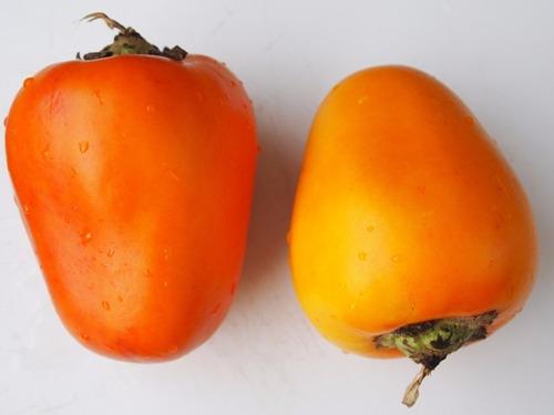 Maná Cubiú Cocona Solanum Sessiliflorum Sementes Para Mudas