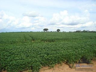 Fazenda Em Morrinhos Com 103 Alqueires - Terra De Cultura -