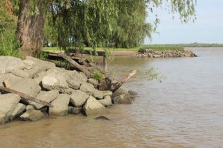 Cabaña En Delta Del Tigre