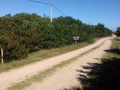 4 Solares A 100 Mt. Playa S/ Calle 25( Abierta) Con Luz Y 26