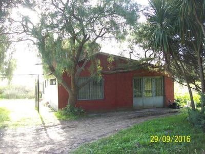 Chacra 4 Has Sobre Mendoza A Metros De La Perimetral