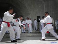 Clases Entrena Kungfu Wushu Artes Marciales Aragua Pakhokpai