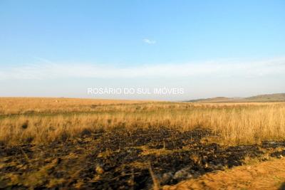 Fazenda Com 300 Ha Em Rosário Do Sul