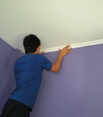 Pintor Profesional. Trabajos De Pintura. Pintura De Casas
