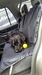 Funda Auto Cubre Tapizado Perro Mascota Impermeable. Mkr