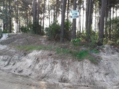 Suc Lomas. Terrenos Financiados Nilo Park 10, En Cuotas De