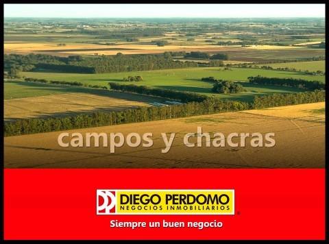 Imagen 1 de 3 de En El Sur Mas De 50 Propuestas...