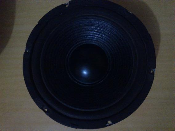 Alto-falante Spyder 10 Polegadas 80w Rms