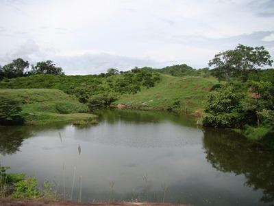 Fincas En Tocaima De 5.000 A 10.000 Mts