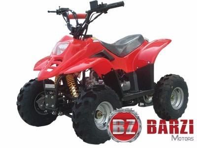 Quadriciclo 4 Tempos Infantil 110cc Barzi Motors Bz Flash