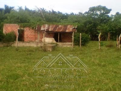 Coalición Vende En Moca 32 Tareas Tierra Agricola $ 3.7