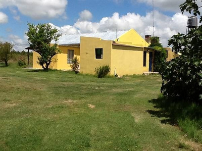 Encantadora Chacra De 5.3 Hectareas En Rincón Del Gigante