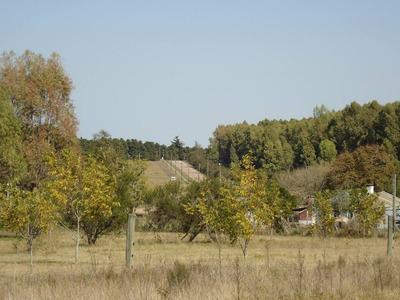 Chacra De 3 Hectáreassobre Ruta 47; Vivienda Y Plantaciones