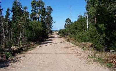 Lotes Céntricos Balneario La Esmeralda Rocha Uruguay Dueño