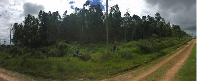 Campo En Venta En Tacuarembó