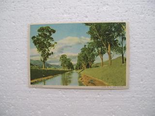 Cartão Postal - Canal Avenida João Pinheiro- Poços De Caldas